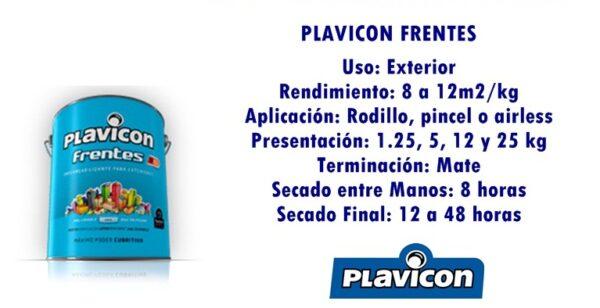 PLAVICON FRENTES